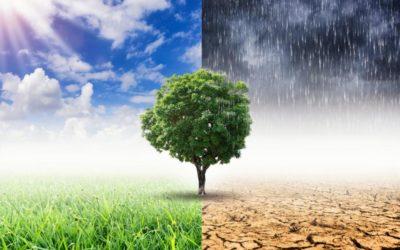 """""""WIKT – Wsparcie działań na rzecz ochrony klimatu w regionie transgranicznym"""""""